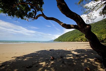 Cape Tribulation dans le Queensland