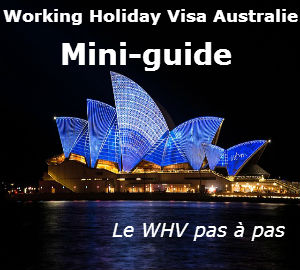 Mini guide pratique WHV